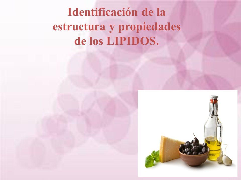 Identificación de la estructura y propiedades de los LIPIDOS.