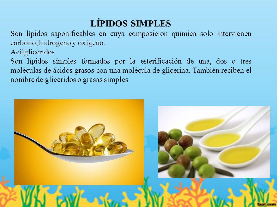 LÍPIDOS SIMPLES Son lípidos saponificables en cuya composición química sólo intervienen carbono, hidrógeno y oxígeno.