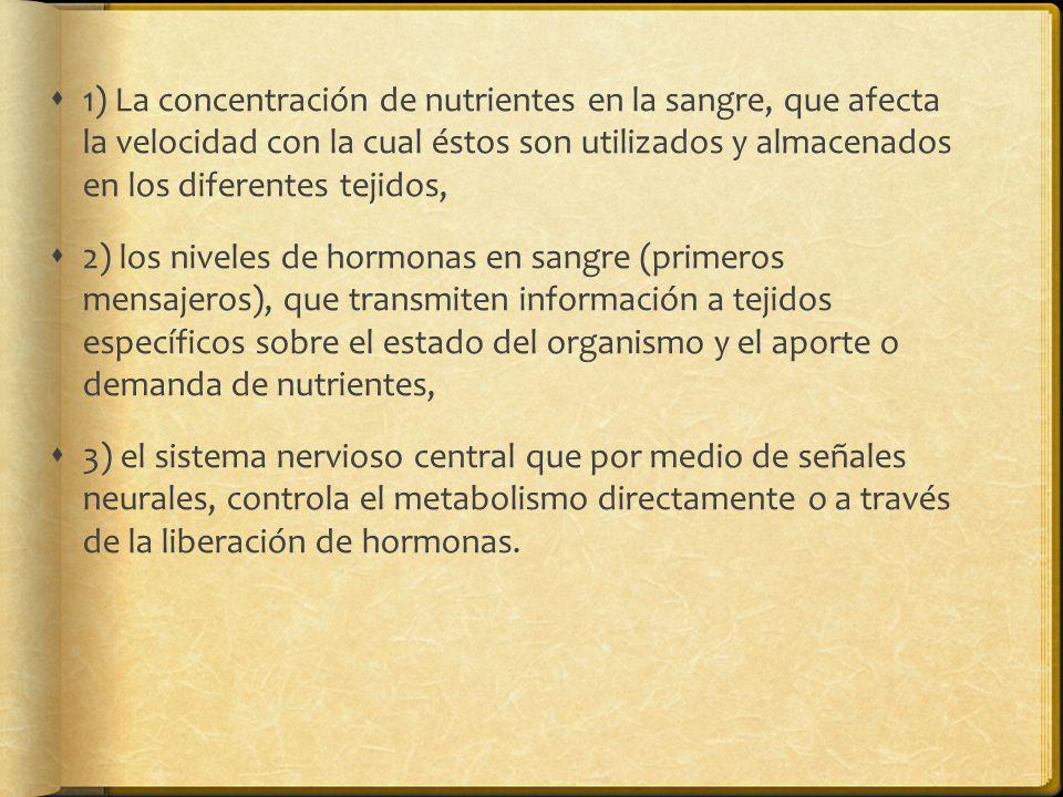 1) La concentración de nutrientes en la sangre, que afecta la velocidad con la cual éstos son utilizados y almacenados en los diferentes tejidos, 2) l