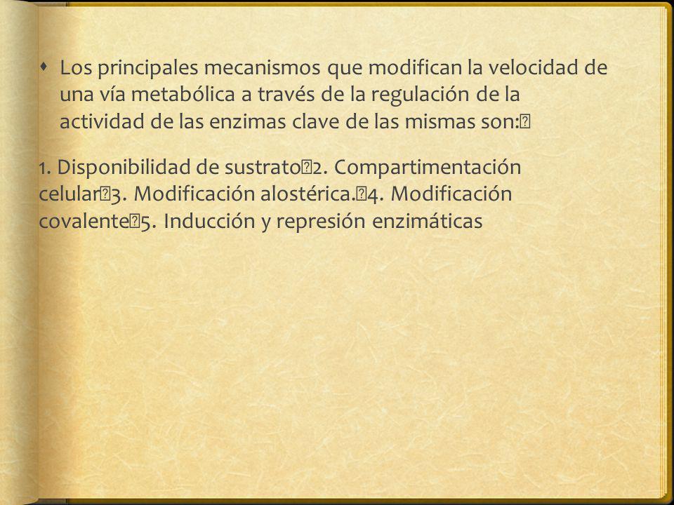 Los principales mecanismos que modifican la velocidad de una vía metabólica a través de la regulación de la actividad de las enzimas clave de las mism