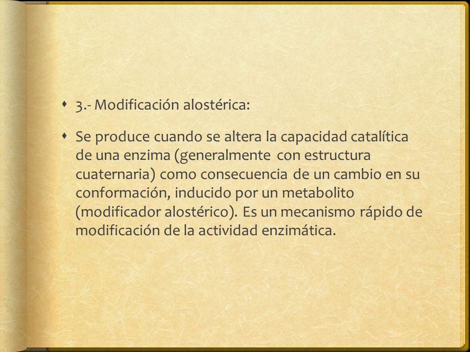 3.- Modificación alostérica: Se produce cuando se altera la capacidad catalítica de una enzima (generalmente con estructura cuaternaria) como consecue