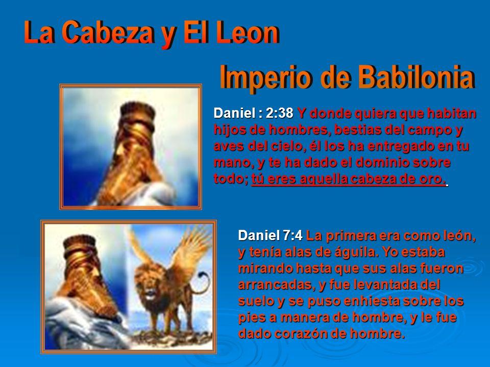 Daniel : 2:38 Y donde quiera que habitan hijos de hombres, bestias del campo y aves del cielo, él los ha entregado en tu mano, y te ha dado el dominio sobre todo; tú eres aquella cabeza de oro.