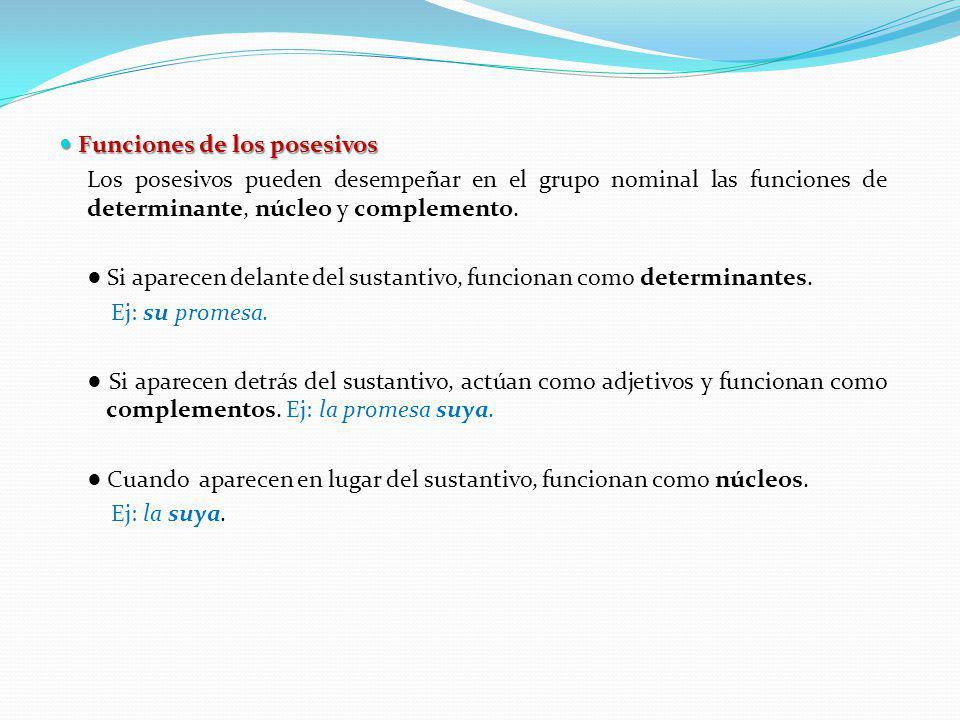 Funciones de los posesivos Funciones de los posesivos Los posesivos pueden desempeñar en el grupo nominal las funciones de determinante, núcleo y comp