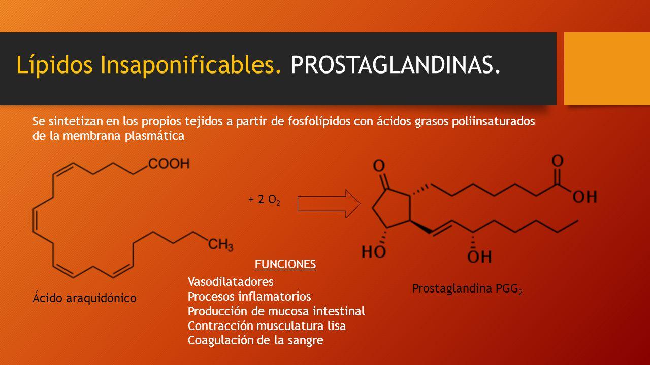 Lípidos Insaponificables. PROSTAGLANDINAS. Se sintetizan en los propios tejidos a partir de fosfolípidos con ácidos grasos poliinsaturados de la membr