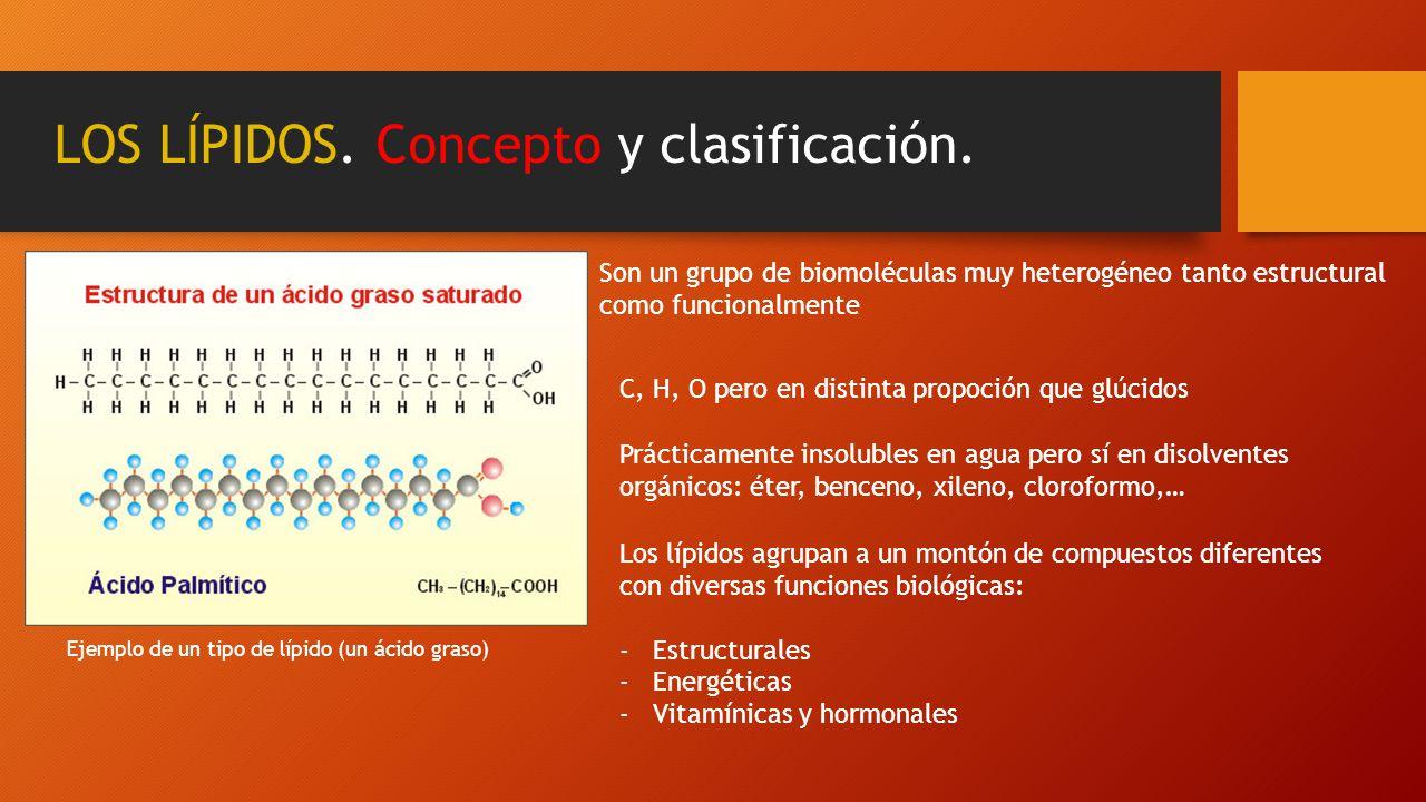 LOS LÍPIDOS. Concepto y clasificación. Son un grupo de biomoléculas muy heterogéneo tanto estructural como funcionalmente C, H, O pero en distinta pro
