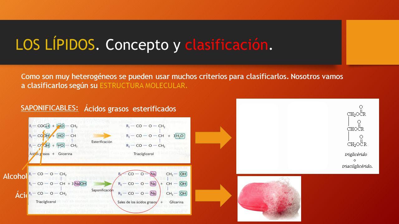 LOS LÍPIDOS. Concepto y clasificación. Como son muy heterogéneos se pueden usar muchos criterios para clasificarlos. Nosotros vamos a clasificarlos se