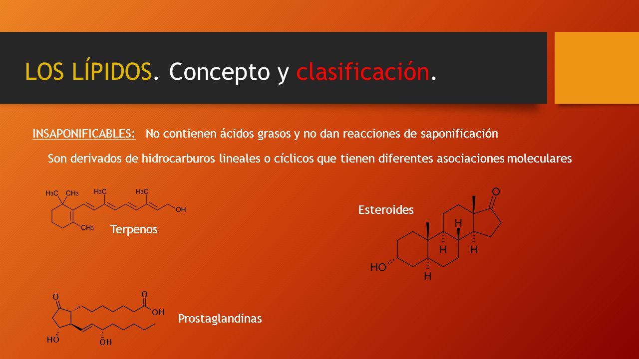 LOS LÍPIDOS. Concepto y clasificación. INSAPONIFICABLES:No contienen ácidos grasos y no dan reacciones de saponificación Son derivados de hidrocarburo