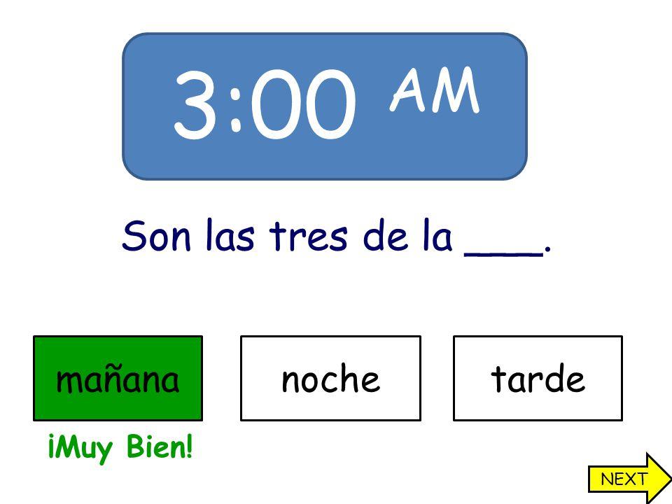 3:00 AM Son las tres de la ___. mañananochetarde ¡Muy Bien! NEXT