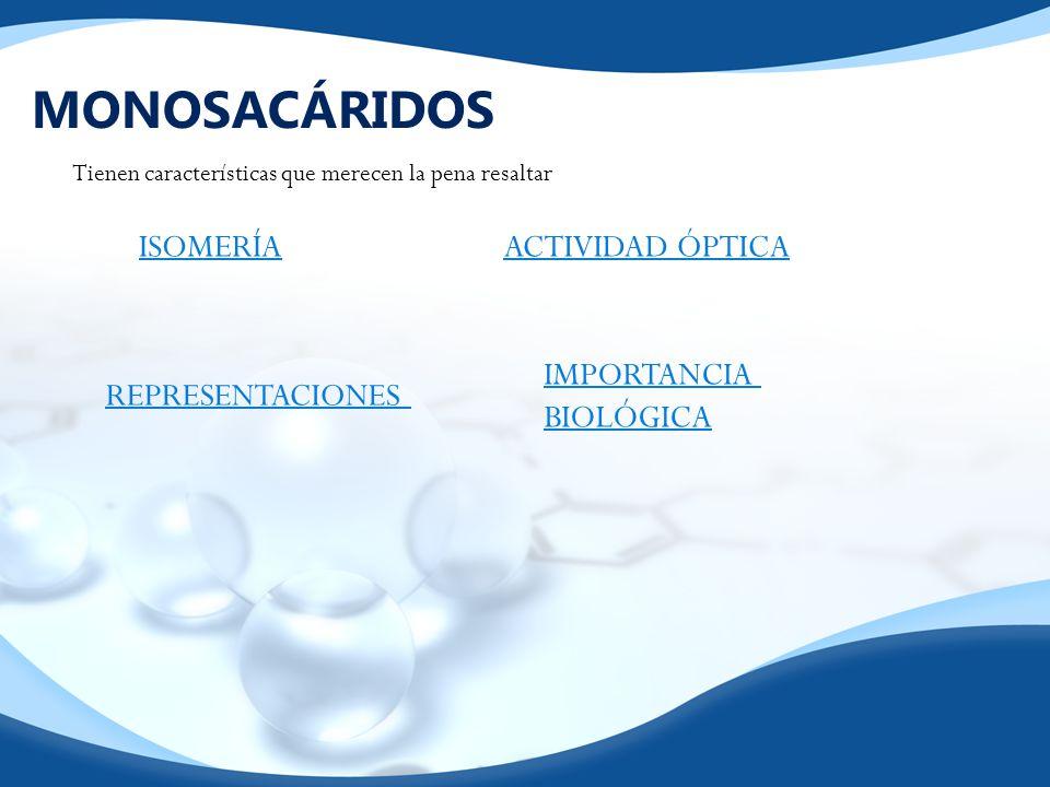 HOMOPOLISACÁRIDOS DE RESERVA ALMIDÓN GLUCÓGENO Forma de almacenar glucosa EVITANDO la presión osmótica.¿Por qué.