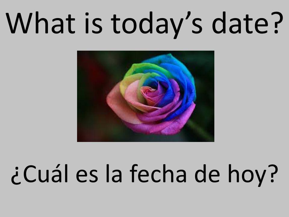 What is todays date ¿Cuál es la fecha de hoy