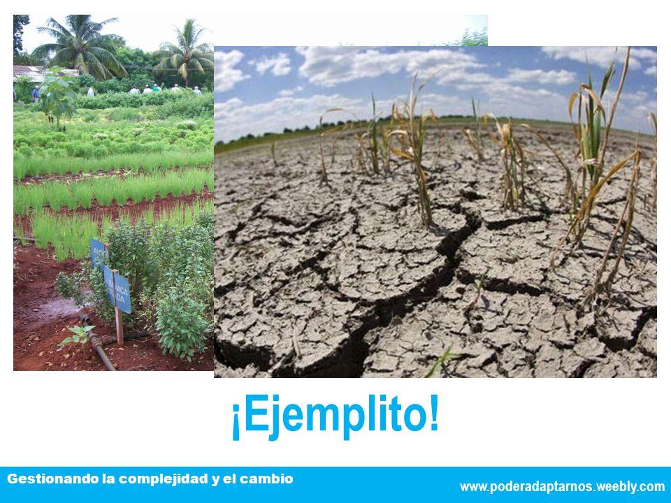 www.poderadaptarnos.weebly.com Gestionando la complejidad y el cambio ¡Ejemplito!
