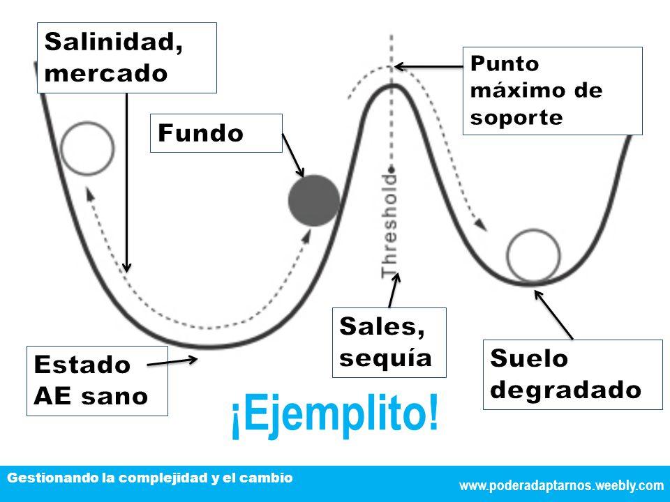 TÍTULO DE LA EXPOSICIÓN www.poderadaptarnos.weebly.com Gestionando la complejidad y el cambio ¡Ejemplito!