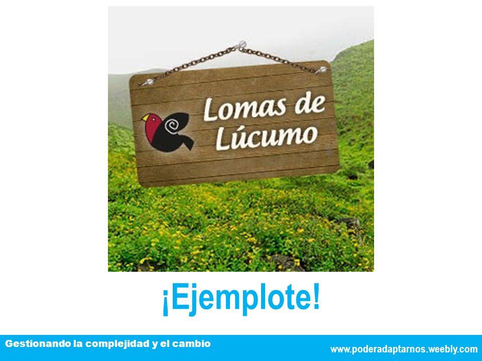 www.poderadaptarnos.weebly.com Gestionando la complejidad y el cambio ¡Ejemplote!