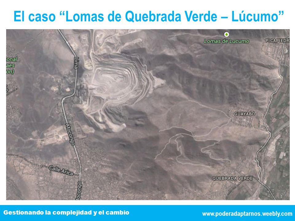 www.poderadaptarnos.weebly.com Gestionando la complejidad y el cambio El caso Lomas de Quebrada Verde – Lúcumo