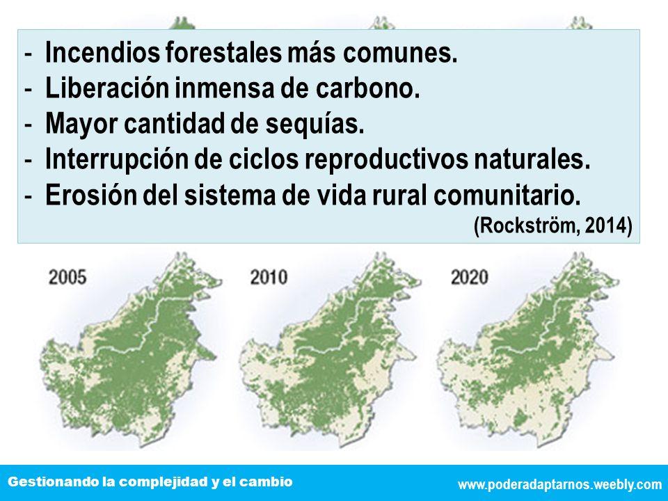 www.poderadaptarnos.weebly.com Gestionando la complejidad y el cambio - Incendios forestales más comunes. - Liberación inmensa de carbono. - Mayor can