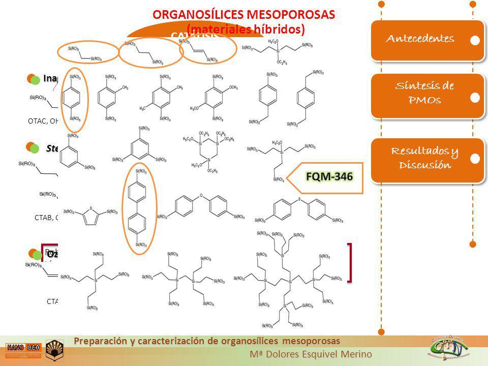 Preparación y caracterización de organosílices mesoporosas Mª Dolores Esquivel Merino Mª Dolores Esquivel Merino Utilizar distintos GRUPOS ORGÁNICOS R