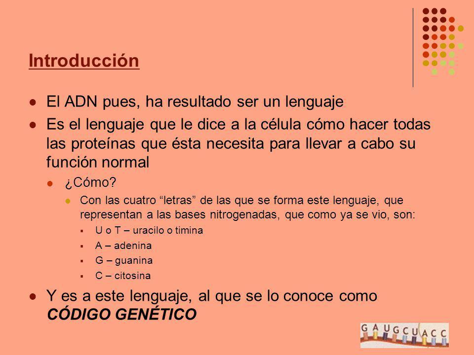 Introducción El ADN pues, ha resultado ser un lenguaje Es el lenguaje que le dice a la célula cómo hacer todas las proteínas que ésta necesita para ll