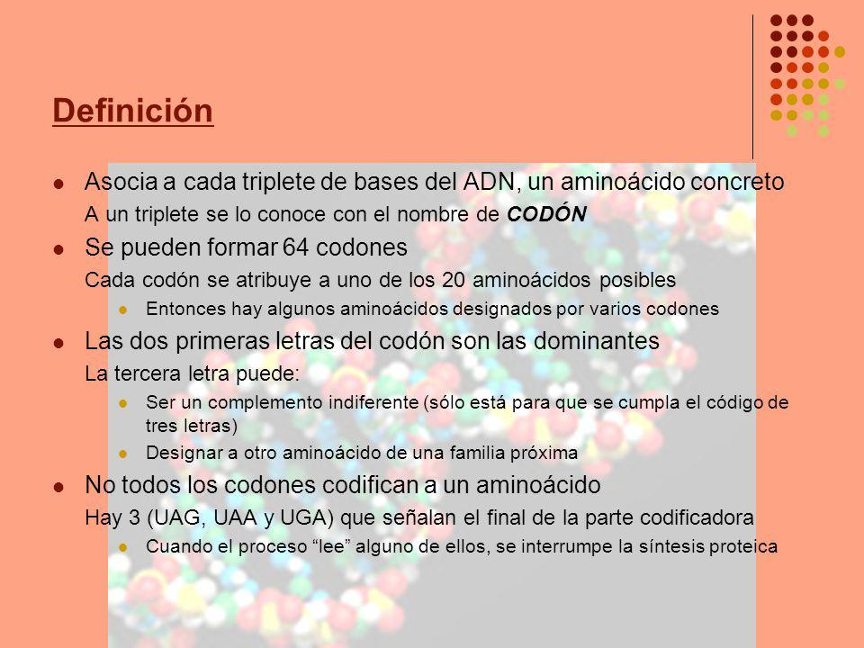Definición Asocia a cada triplete de bases del ADN, un aminoácido concreto A un triplete se lo conoce con el nombre de CODÓN Se pueden formar 64 codon