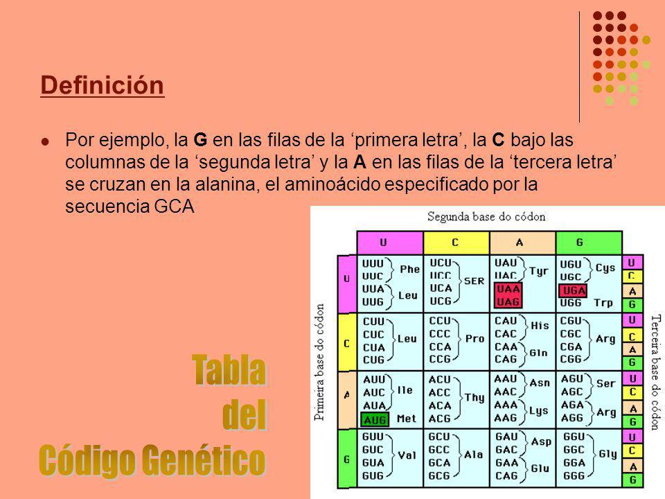 Definición Por ejemplo, la G en las filas de la primera letra, la C bajo las columnas de la segunda letra y la A en las filas de la tercera letra se cruzan en la alanina, el aminoácido especificado por la secuencia GCA