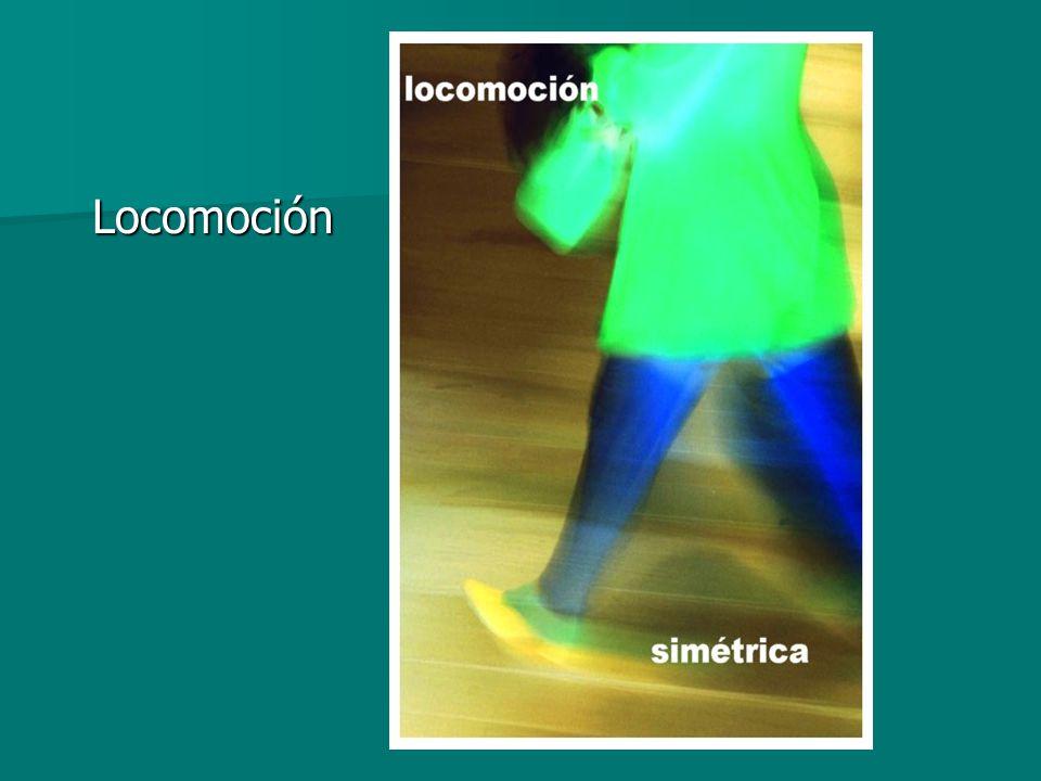 Locomoción Locomoción