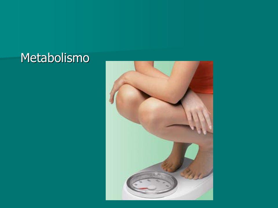 Metabolismo Metabolismo