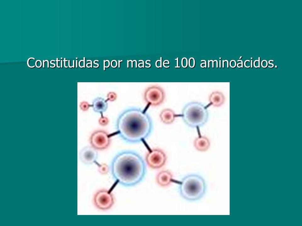 Constituidas por mas de 100 aminoácidos. Constituidas por mas de 100 aminoácidos.