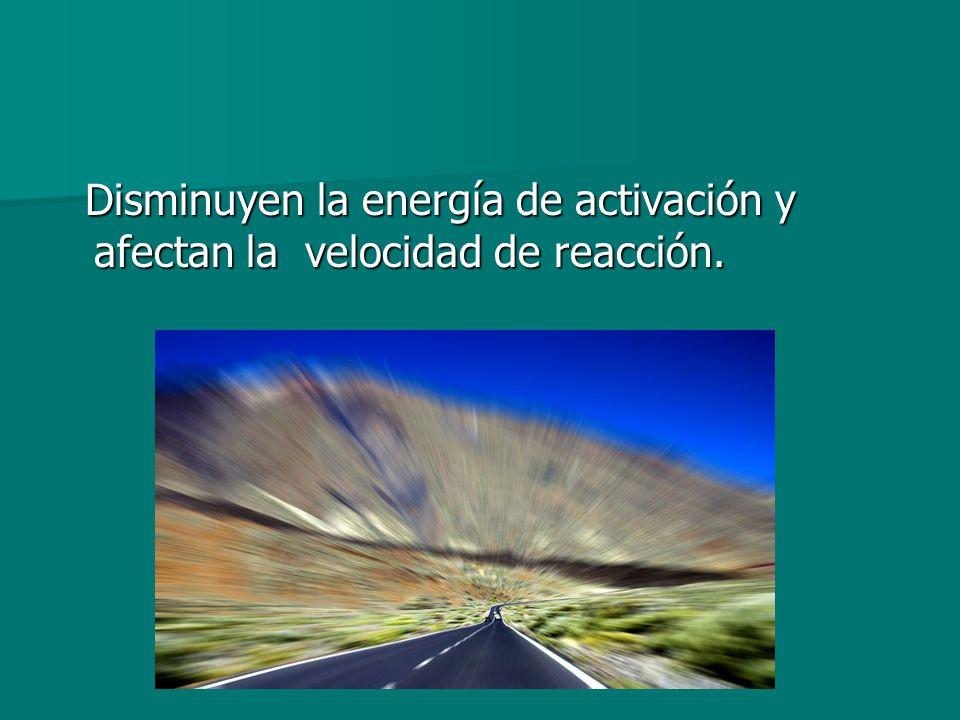 Disminuyen la energía de activación y afectan la velocidad de reacción. Disminuyen la energía de activación y afectan la velocidad de reacción.