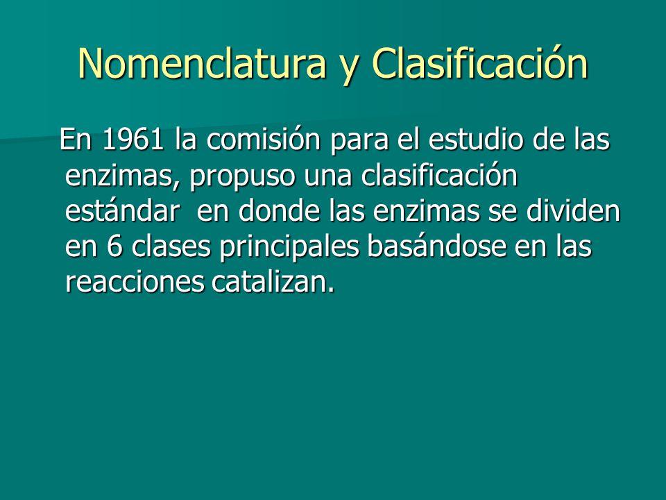 Nomenclatura y Clasificación En 1961 la comisión para el estudio de las enzimas, propuso una clasificación estándar en donde las enzimas se dividen en 6 clases principales basándose en las reacciones catalizan.