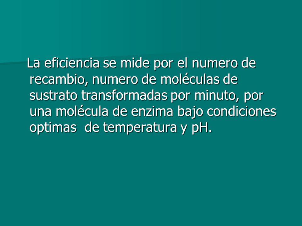 La eficiencia se mide por el numero de recambio, numero de moléculas de sustrato transformadas por minuto, por una molécula de enzima bajo condiciones optimas de temperatura y pH.