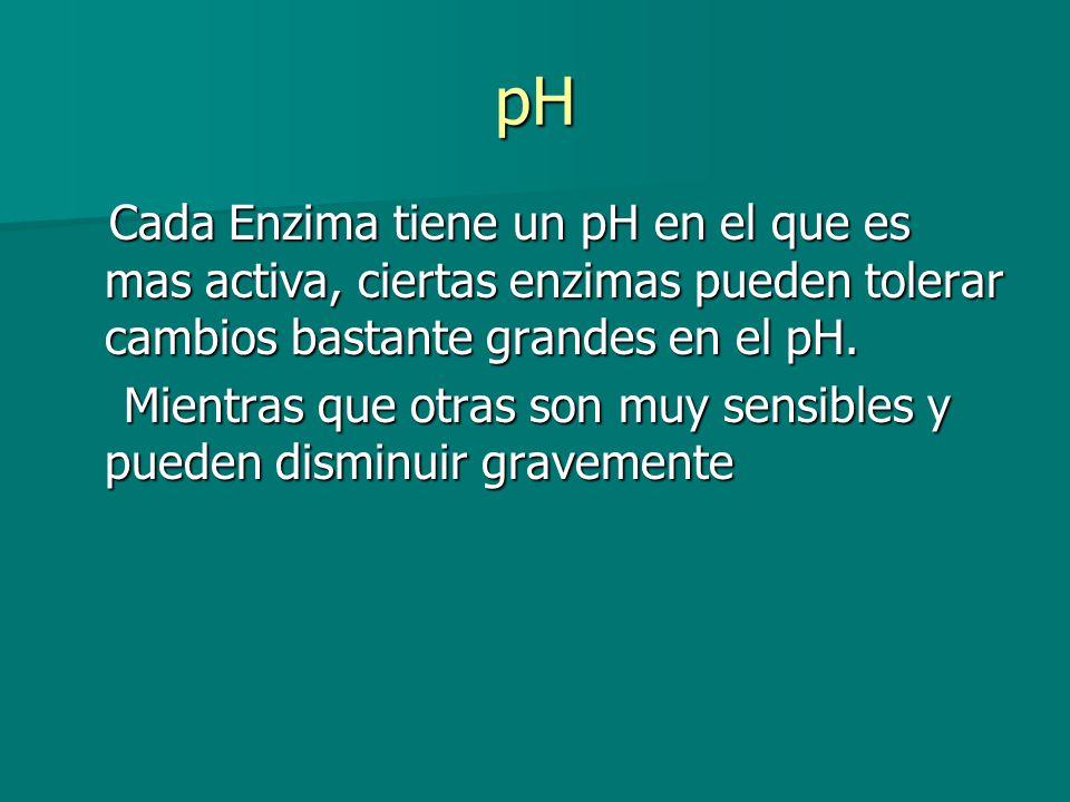pH Cada Enzima tiene un pH en el que es mas activa, ciertas enzimas pueden tolerar cambios bastante grandes en el pH. Cada Enzima tiene un pH en el qu