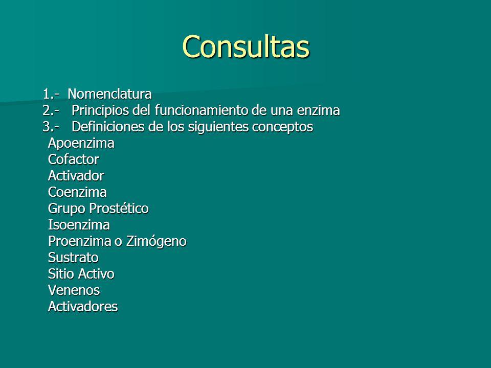 Consultas 1.- Nomenclatura 1.- Nomenclatura 2.- Principios del funcionamiento de una enzima 2.- Principios del funcionamiento de una enzima 3.- Defini