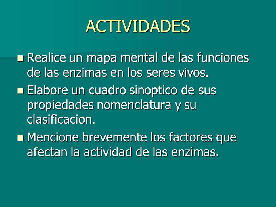 ACTIVIDADES Realice un mapa mental de las funciones de las enzimas en los seres vivos. Realice un mapa mental de las funciones de las enzimas en los s