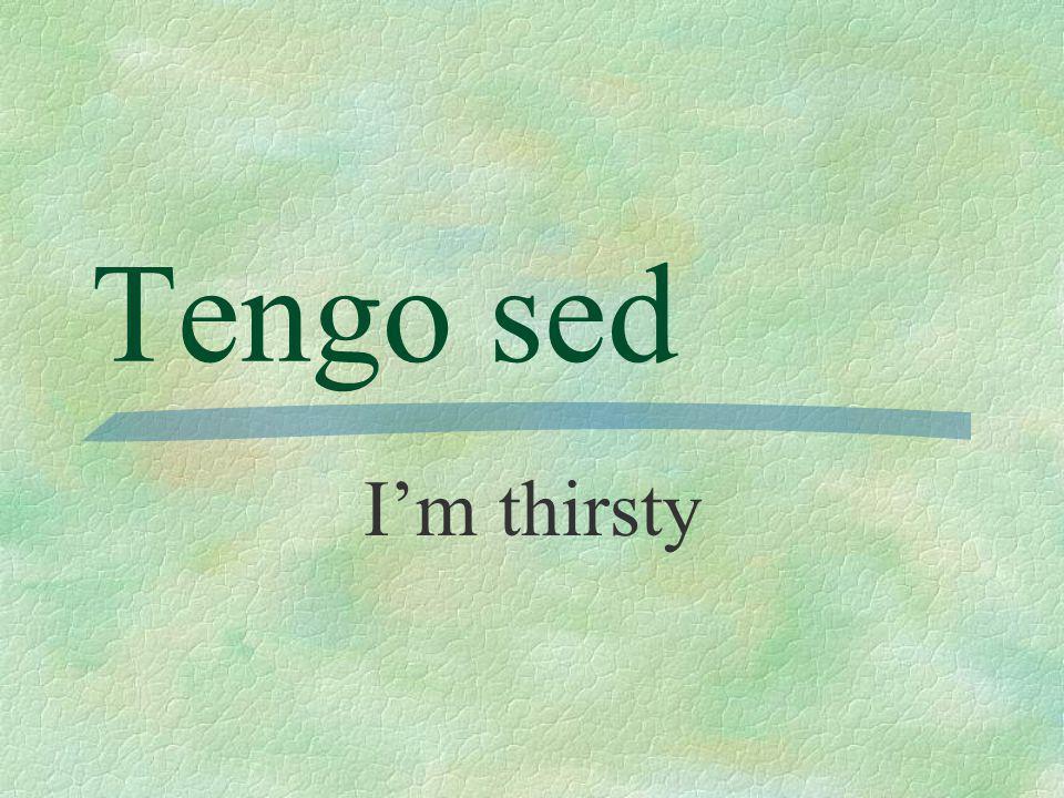 Tengo sed Im thirsty