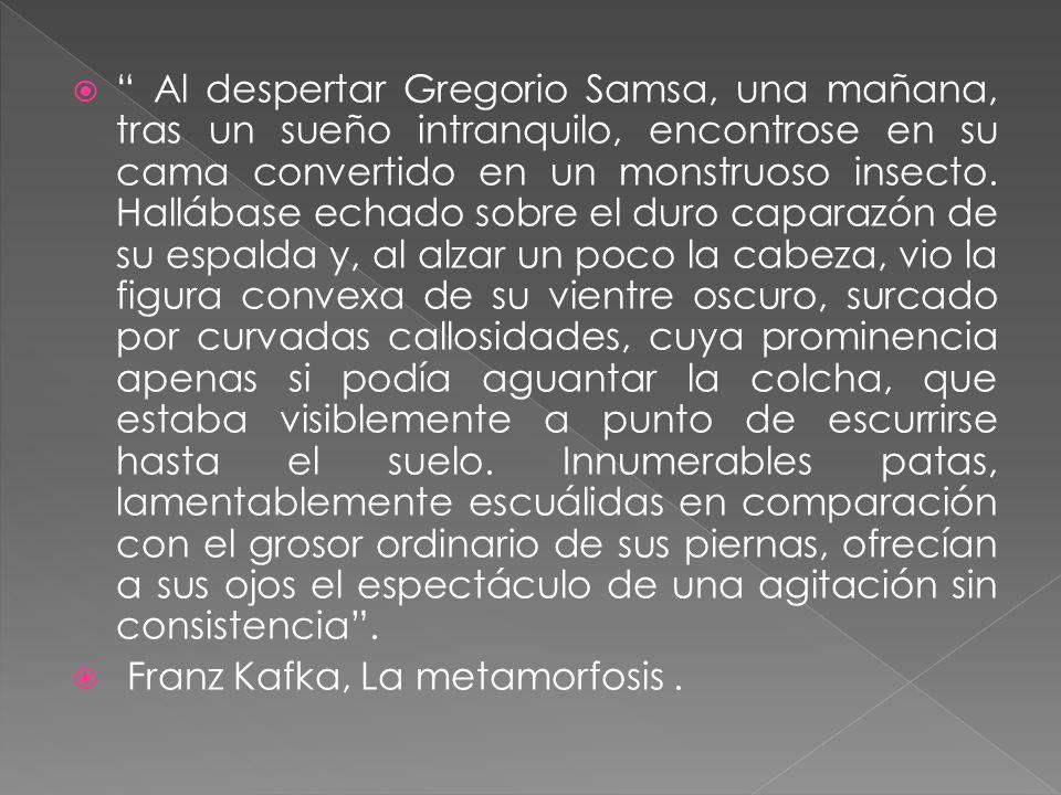 Al despertar Gregorio Samsa, una mañana, tras un sueño intranquilo, encontrose en su cama convertido en un monstruoso insecto. Hallábase echado sobre
