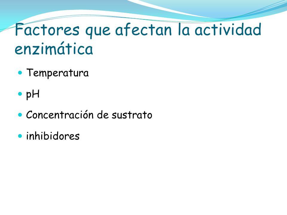 Factores que afectan la actividad enzimática Temperatura pH Concentración de sustrato inhibidores