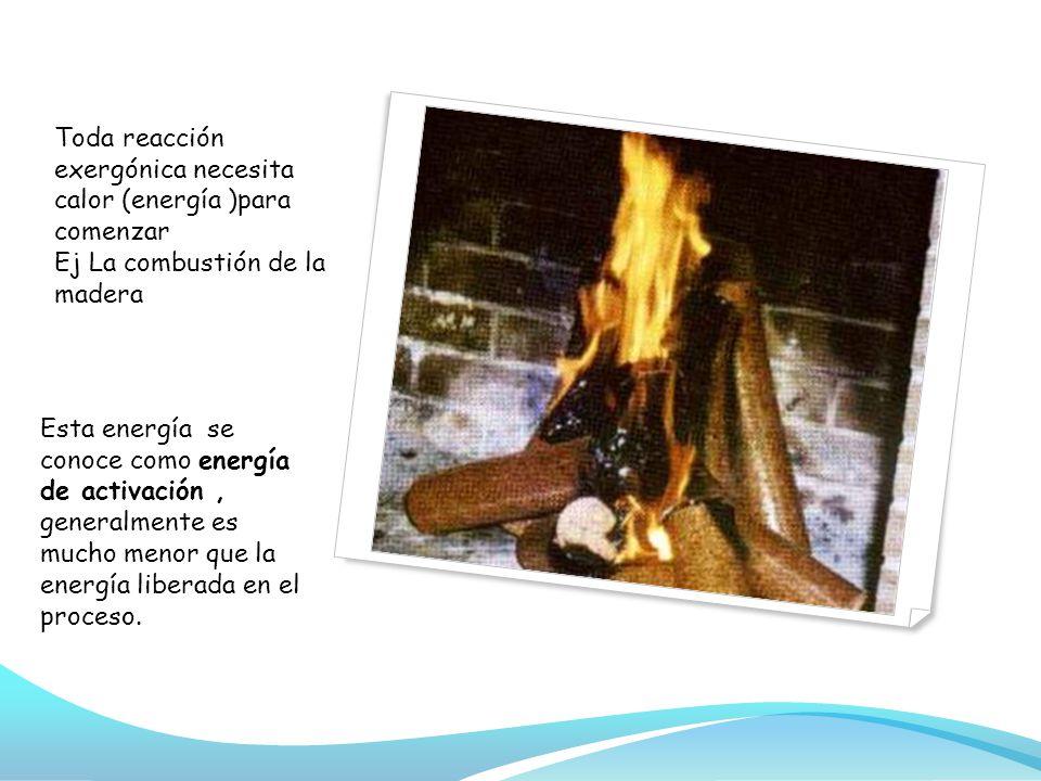 Toda reacción exergónica necesita calor (energía )para comenzar Ej La combustión de la madera Esta energía se conoce como energía de activación, generalmente es mucho menor que la energía liberada en el proceso.