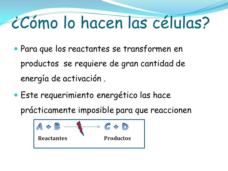 ¿Cómo lo hacen las células? ReactantesProductos