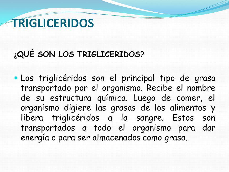 TRIGLICERIDOS ¿ QUÉ SON LOS TRIGLICERIDOS? Los triglicéridos son el principal tipo de grasa transportado por el organismo. Recibe el nombre de su estr