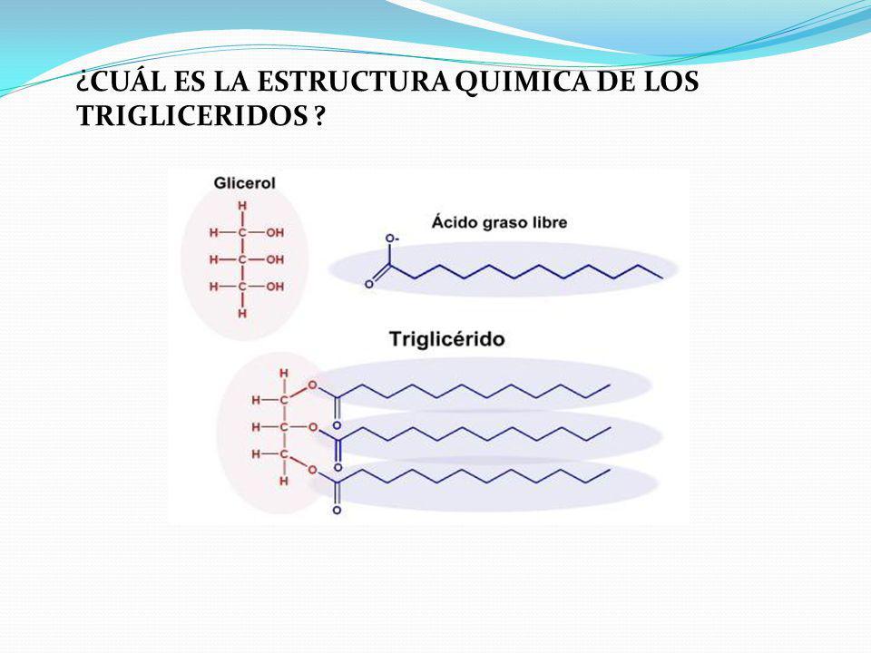 TIPO DE ENLACE El enlace entre la molécula de glicerina y los ácidos grasos es covalente se denomina enlace ester y se forma por deshidratación