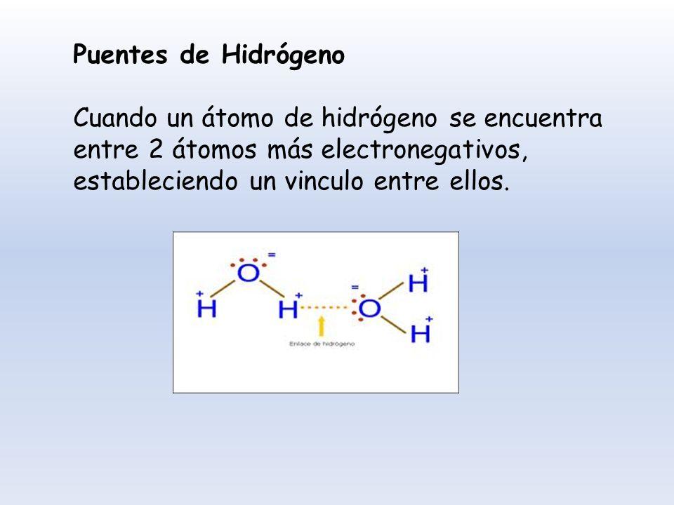 Puentes de Hidrógeno Cuando un átomo de hidrógeno se encuentra entre 2 átomos más electronegativos, estableciendo un vinculo entre ellos.