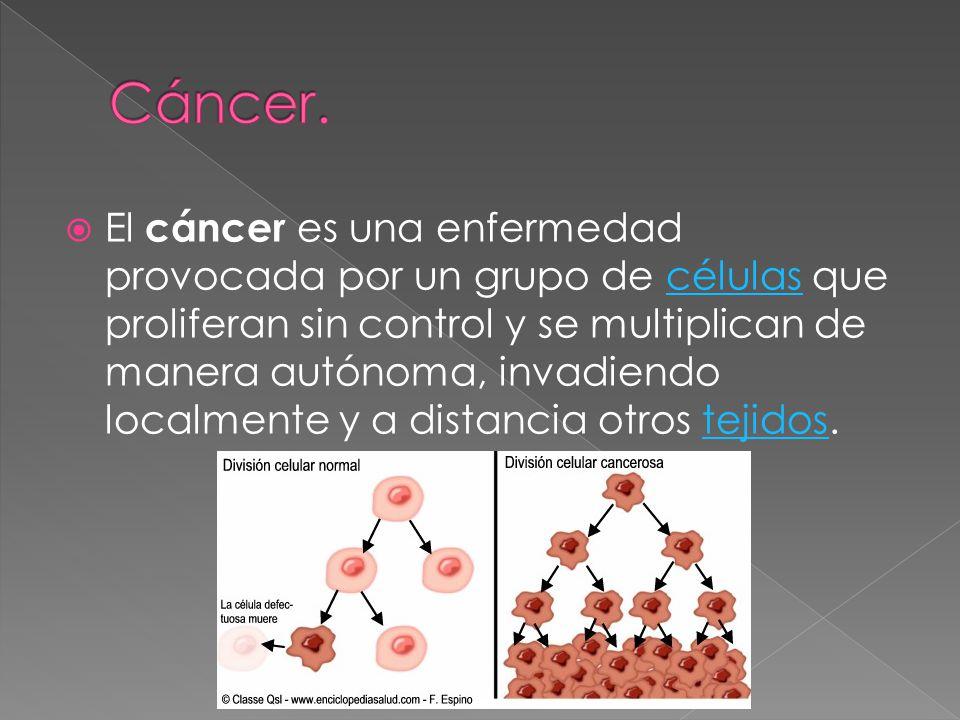 El cáncer es una enfermedad provocada por un grupo de células que proliferan sin control y se multiplican de manera autónoma, invadiendo localmente y