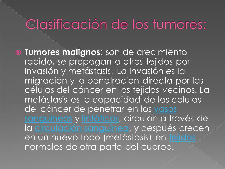 Tumores malignos : son de crecimiento rápido, se propagan a otros tejidos por invasión y metástasis. La invasión es la migración y la penetración dire