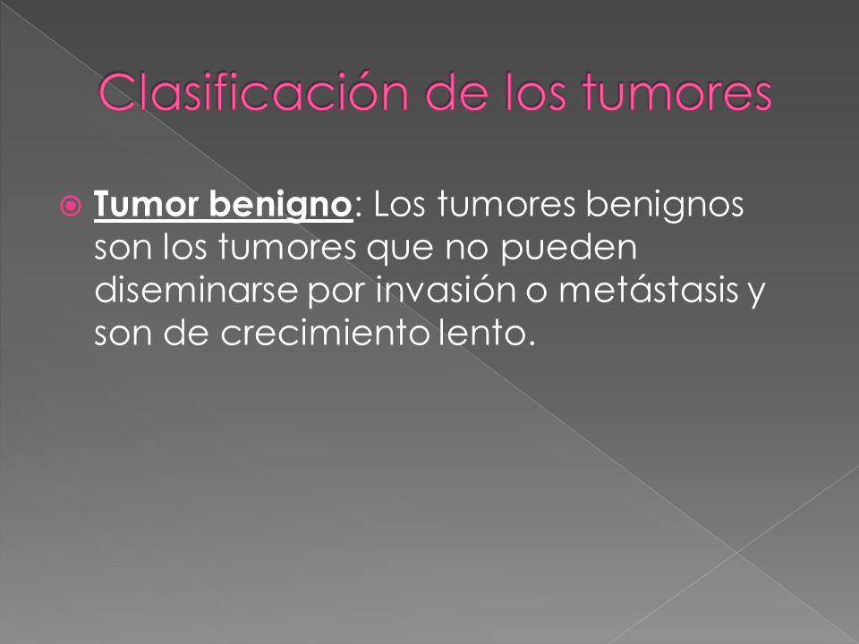 Tumor benigno : Los tumores benignos son los tumores que no pueden diseminarse por invasión o metástasis y son de crecimiento lento.