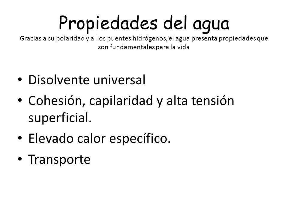 Propiedades del agua Gracias a su polaridad y a los puentes hidrógenos, el agua presenta propiedades que son fundamentales para la vida Disolvente uni