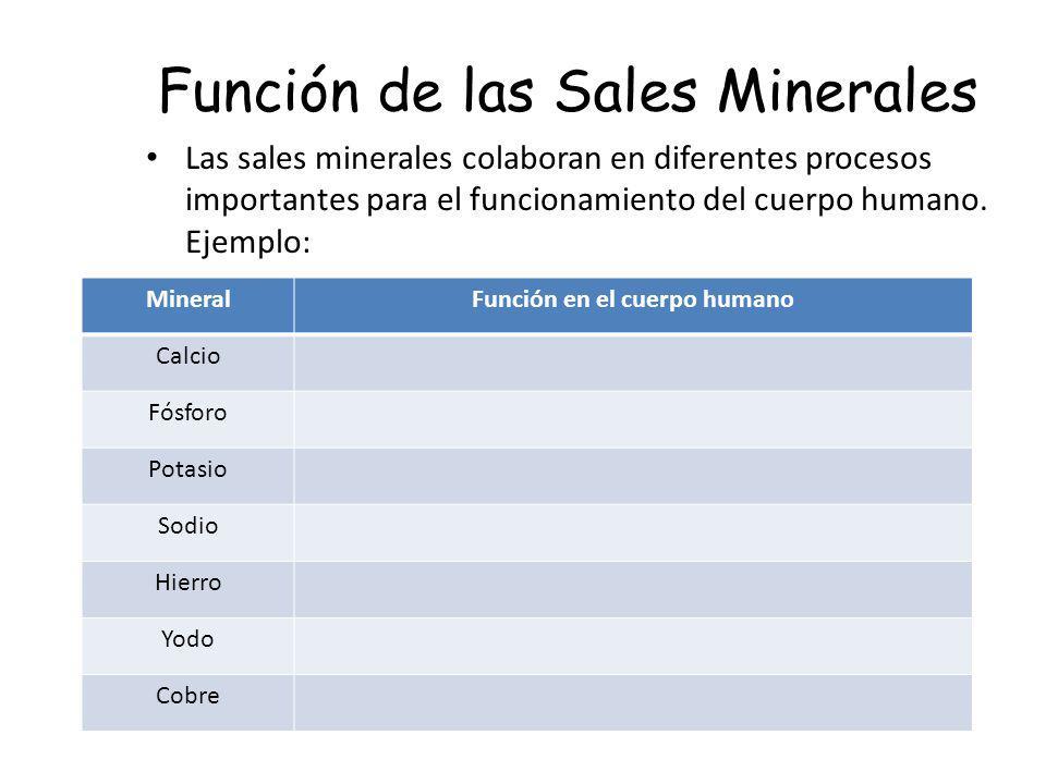 Función de las Sales Minerales Las sales minerales colaboran en diferentes procesos importantes para el funcionamiento del cuerpo humano. Ejemplo: Min