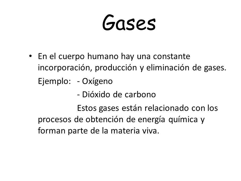 Gases En el cuerpo humano hay una constante incorporación, producción y eliminación de gases. Ejemplo:- Oxígeno - Dióxido de carbono Estos gases están