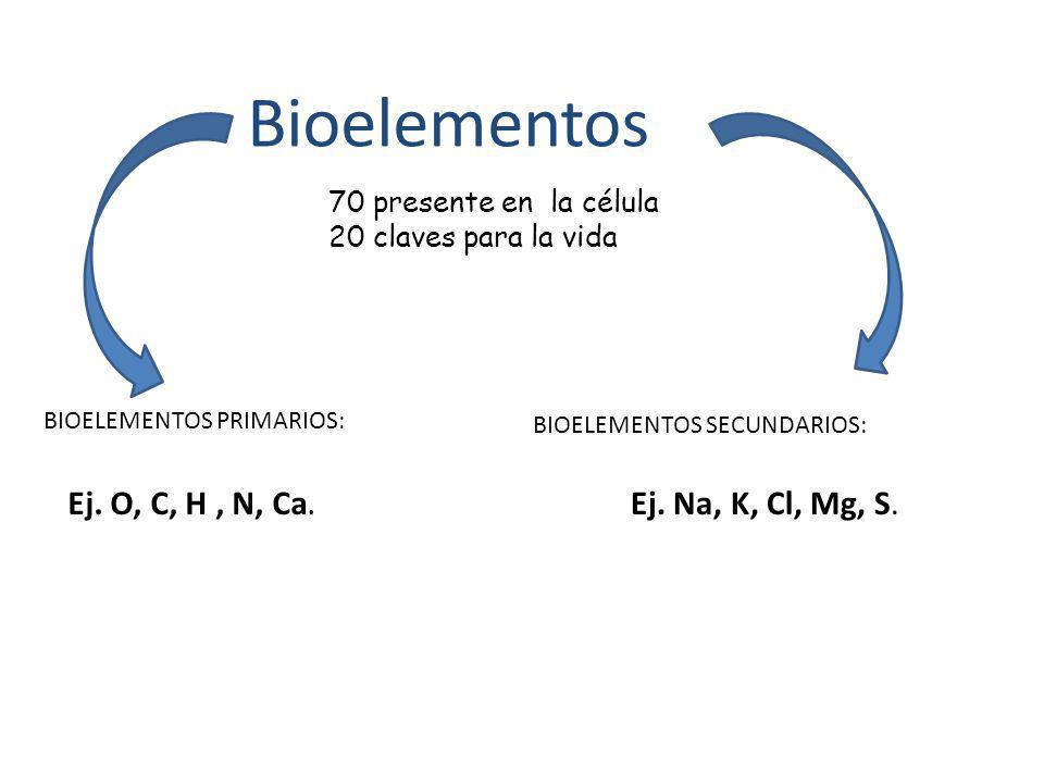 Bioelementos BIOELEMENTOS PRIMARIOS: BIOELEMENTOS SECUNDARIOS: Ej. O, C, H, N, Ca. Ej. Na, K, Cl, Mg, S. 70 presente en la célula 20 claves para la vi