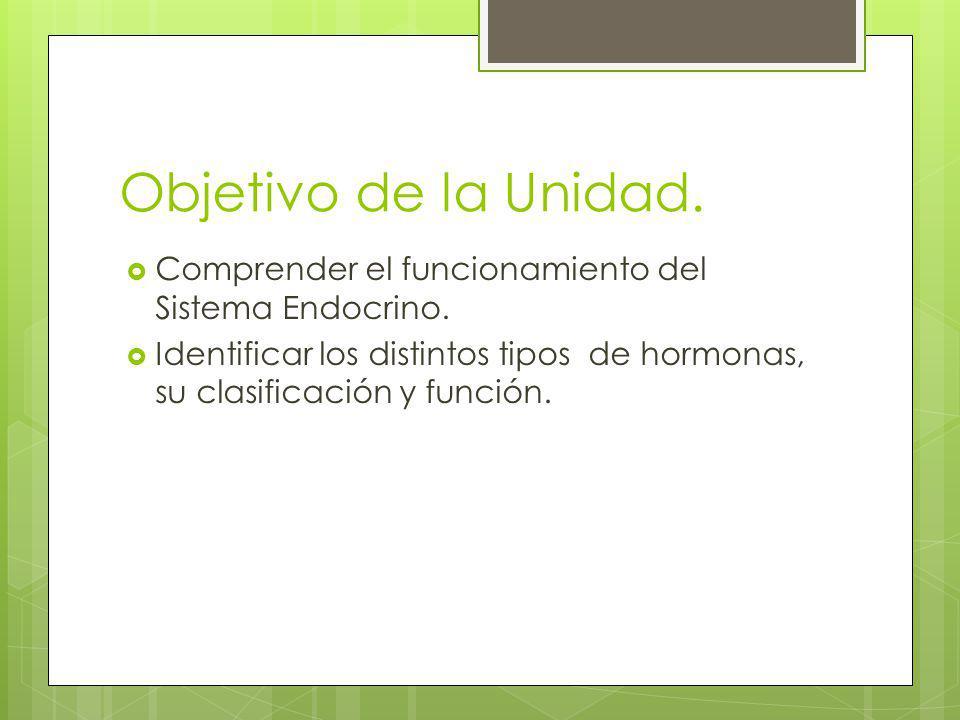 Objetivo de la Unidad. Comprender el funcionamiento del Sistema Endocrino. Identificar los distintos tipos de hormonas, su clasificación y función.
