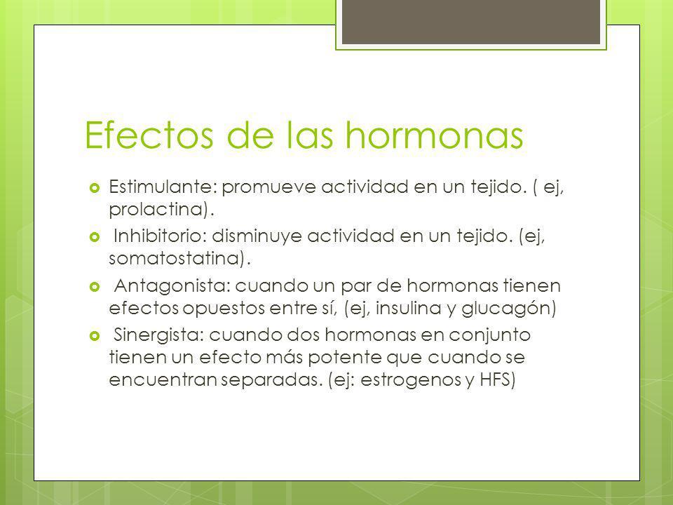Efectos de las hormonas Estimulante: promueve actividad en un tejido. ( ej, prolactina). Inhibitorio: disminuye actividad en un tejido. (ej, somatosta