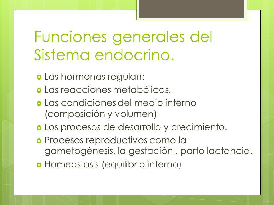 Funciones generales del Sistema endocrino. Las hormonas regulan: Las reacciones metabólicas. Las condiciones del medio interno (composición y volumen)